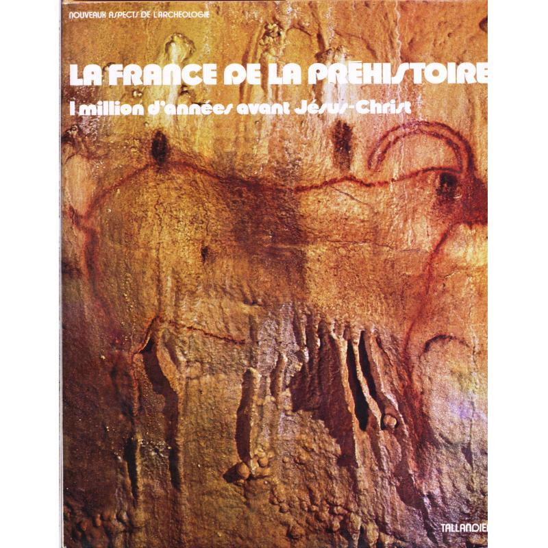 La France de la Préhistoire. 1 million d'années avant Jésus-Christ.